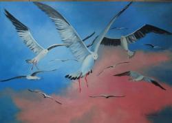 Picturi cu peisaje Pescarusi in zbor