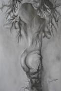 Picturi cu potrete/nuduri Radacini