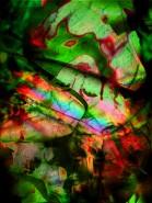 Picturi cu potrete/nuduri Magic love 2