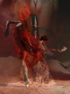 Picturi cu potrete/nuduri Flamenco flight red