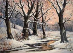 Picturi de iarna A PUS DE IARNA