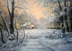 Picturi de iarna BASM NINS IN AMURG