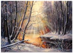 Picturi de iarna MIRAJ NINS