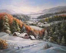 Picturi de iarna Sat de munte troienit