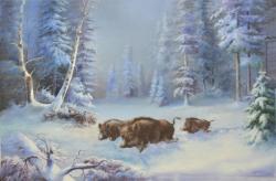 Picturi de iarna Mistreti Iarna