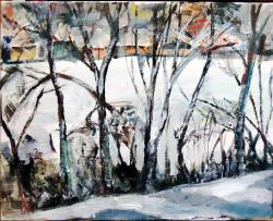 Picturi de iarna Iarna în Baciu