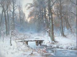 Picturi de iarna iarna cu podet