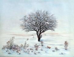 Picturi de iarna Tacerea.iernii