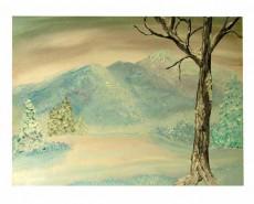 Picturi de iarna Straluciri
