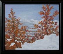 Picturi de iarna Iarna timpurie