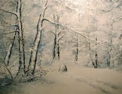 Picturi de iarna Fascinatie in alb