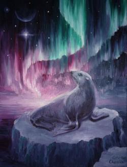 Picturi de iarna Peisaj polar cu foca si aurora boreala