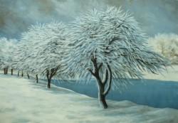 Picturi de iarna Chiciura 2