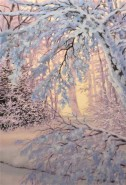 Picturi de iarna Iarna inchetata
