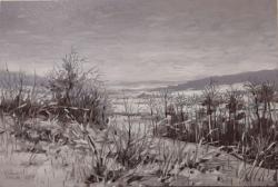 Picturi de iarna iarna peste campuri