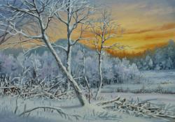 Picturi de iarna INSERARE DE IARNA