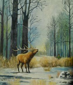 Picturi de iarna cerb in padure