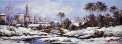Picturi de iarna Iarna in central park