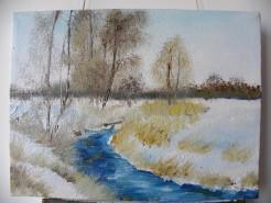 Picturi de iarna Lunca