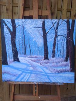 Picturi de iarna iarna în padure