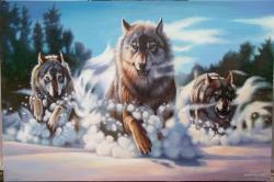 Picturi de iarna Freedom