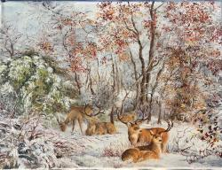 Picturi de iarna Frumusete iarna
