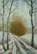 Picturi de iarna Drum de iarna