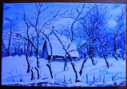 Picturi de iarna Dincolo de gard e iarna