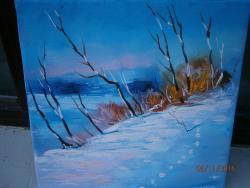 Picturi de iarna peisaj cu liziera