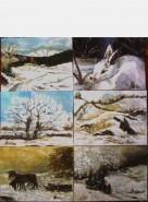 Picturi de iarna 6 ierni