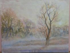 Picturi de iarna Iarna cu ceata