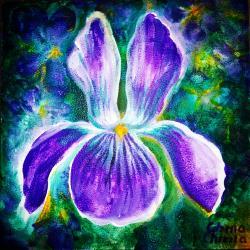Picturi de primavara Viola sororia
