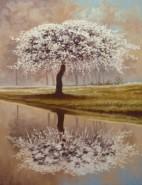 Picturi de primavara Pomul primaverii