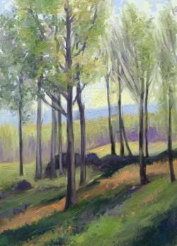 Picturi de primavara renasterea naturii