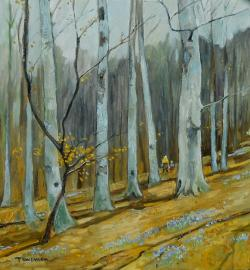 Picturi de primavara viorele in padure 2