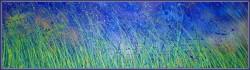 Picturi de primavara ,,furtuna in iarba la asfintit,,