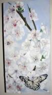 Picturi de primavara Flori de cires