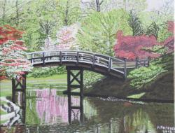 Picturi de primavara Gradina Japoneza
