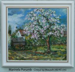 Picturi de primavara Ciresul lui Mausch