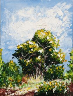 Picturi de primavara Stejar
