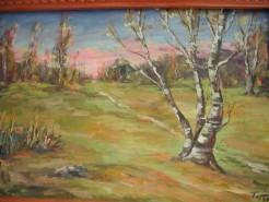 Picturi de primavara Mesteacan peisaj maramures