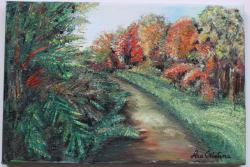 Picturi de toamna Padure tomnatica