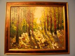 Picturi de toamna Razele padurii