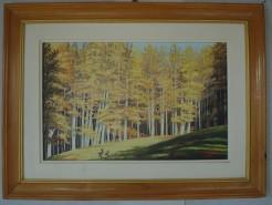 Picturi de toamna Luminis toamna 109