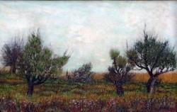 Picturi de toamna Toamna pe lunca