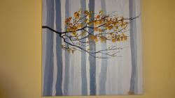 Picturi de toamna padure in ceata