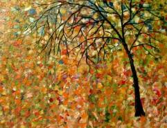 Picturi de toamna Ploaie 2