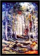 Picturi de toamna In padure