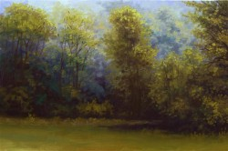 Picturi de toamna Copaci infrigurati