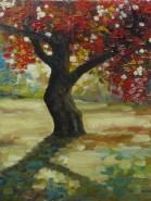 Picturi de toamna Copacul inrosit
